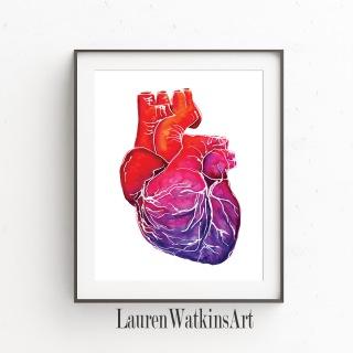 Heart anatomy print